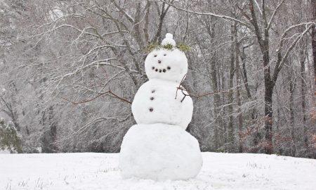 Денеска е Меѓународен ден на снешкото